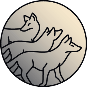 Sketch of three wolves on a grey gradient background