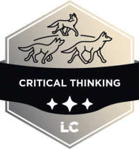 Leading-level Critical Thinking Badge
