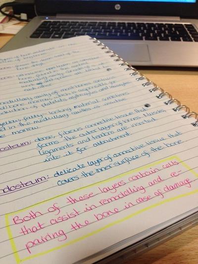 studyblr | Tumblr