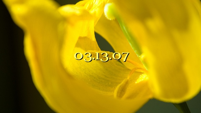 03.13.07