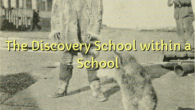 The Discovery School within a School
