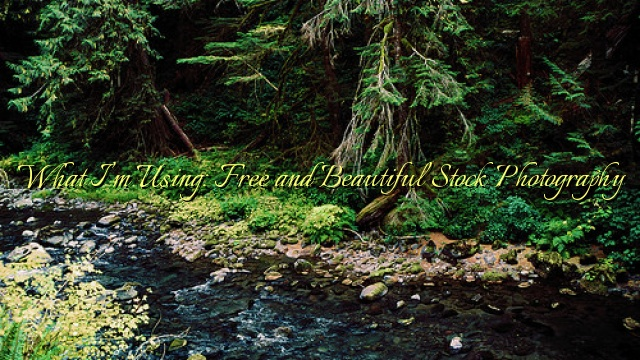 What I'm Using: Free and Beautiful Stock Photography