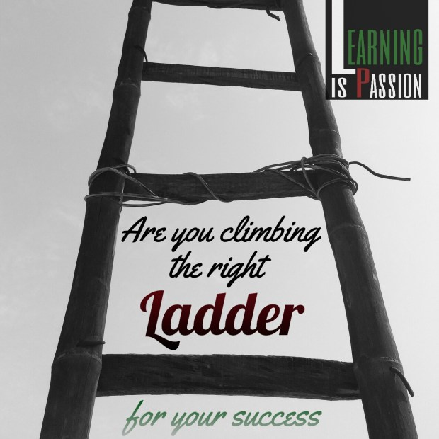 Are you climbing the right ladder for your success