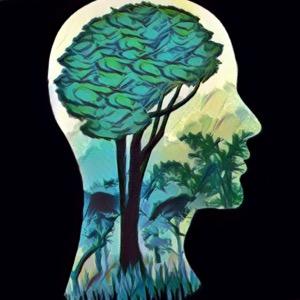mentalidad fija vs mentalidad crecimiento