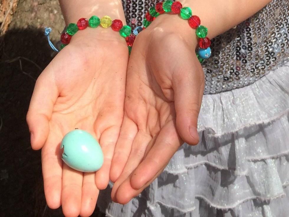 Spring Nature Walk - robin's egg