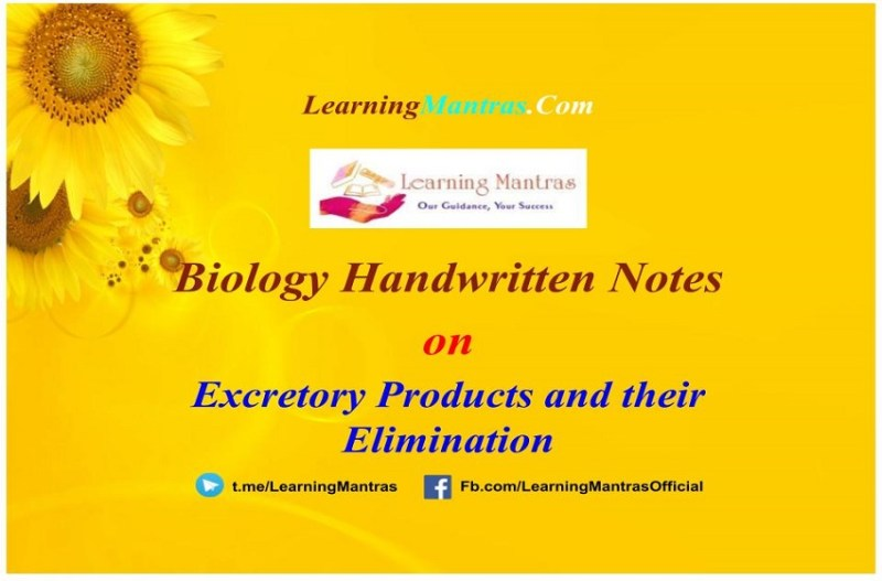 Excretory Products and their Elimination Handwritten Notes PDF