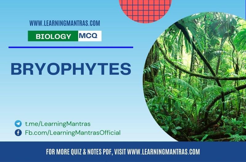 MCQ on Bryophytes