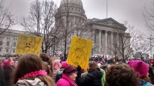 Read more about the article Thoughts following the Women's March