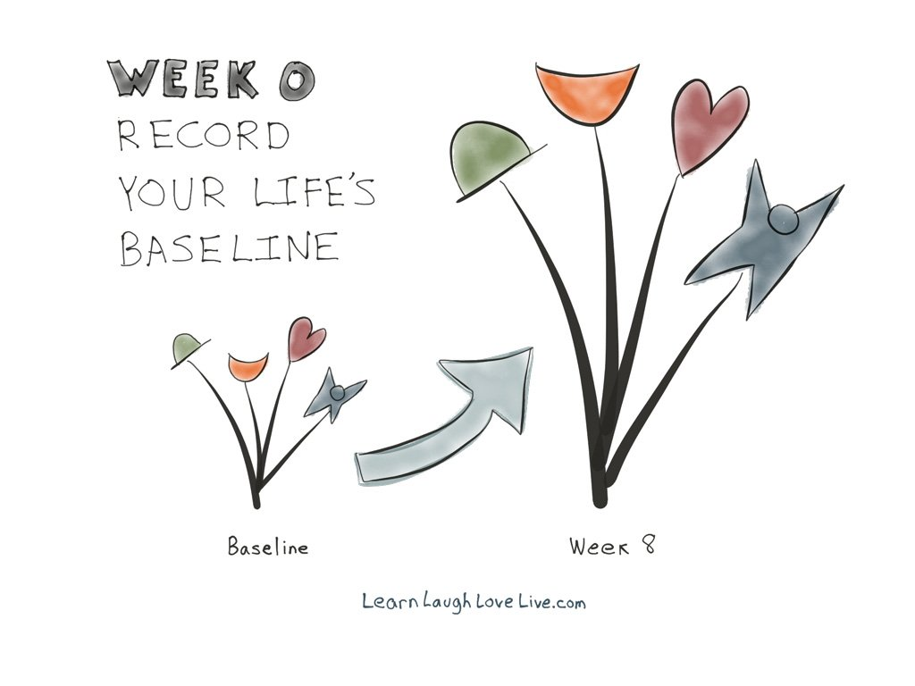 Path Week 0 Baseline LRN LAF LUV LIV LYF Learn Laugh Love Live Life