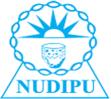 NUDIPU logo
