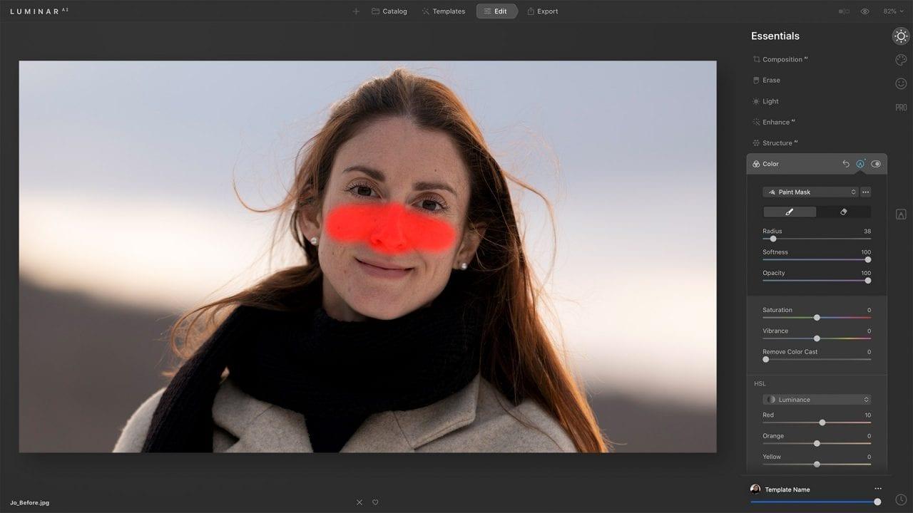 Paint layer mask Luminar AI