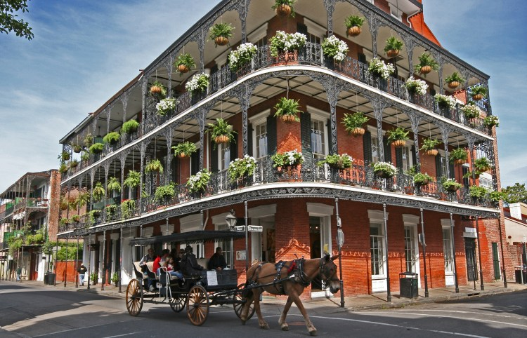 french immersion new orleans