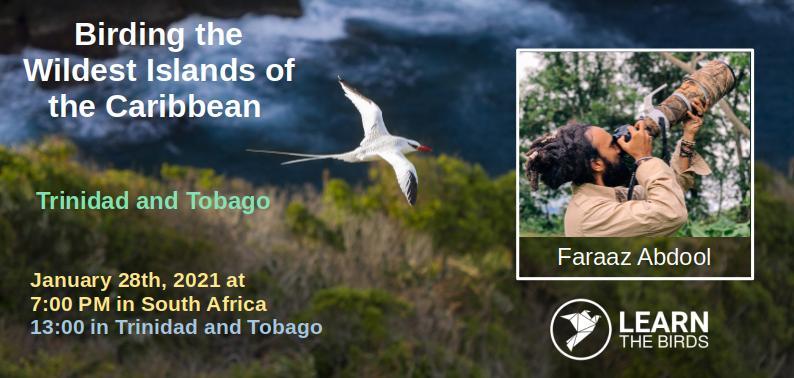 Birding Trinidad and Tobago