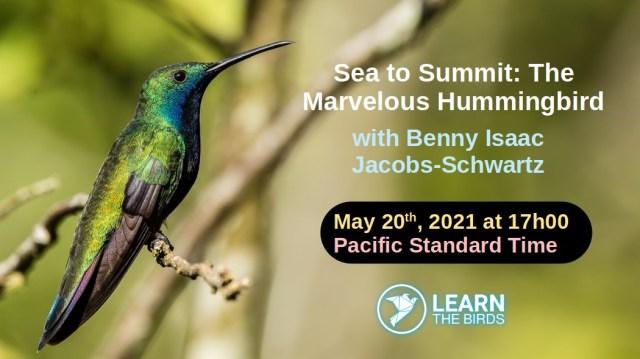 Benny Isaac Jacobs-Schwartz
