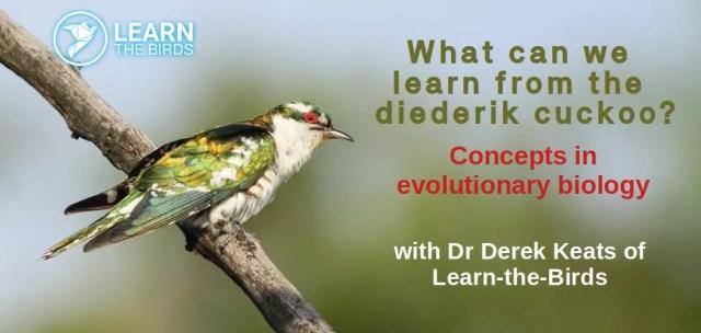 Dr Derek W. Keats