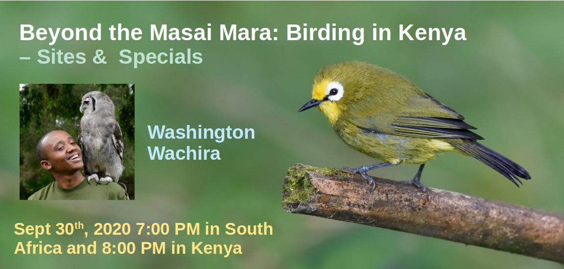 Kenyan birding webinar banner