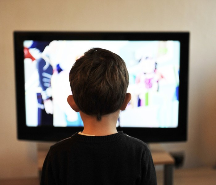 The role of Television and Media in the destruction of society