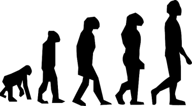 Lamarck, Darwin and The modern Theories of Evolution