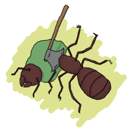an ant being beheaded with a tiny axe