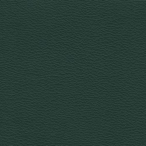 IND8571 Forest Green Independence Contract Vinyl