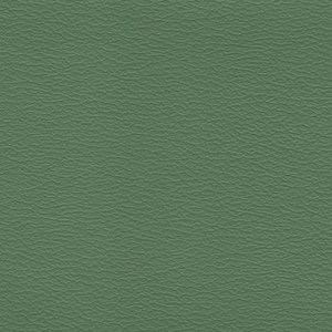 IND8621 Leaf Green Independence Contract Vinyl