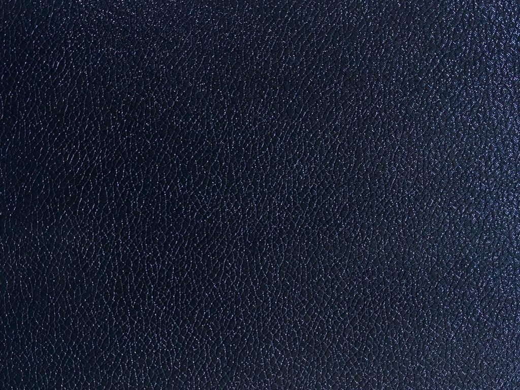 bizon bleumarin perlat