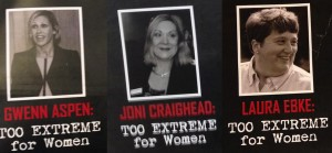 Dem War on Women Mailers 01