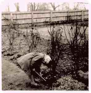 Helen the young gardener (c) Helen Cronin