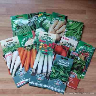 Veggies Galore – a Productive Garden