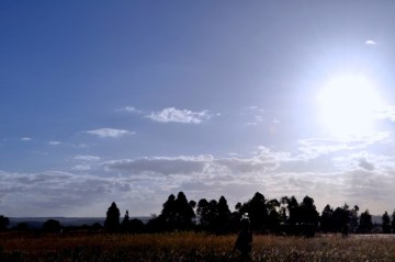 Chikomba West District, Zimbabwe (2014)