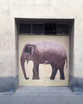 Ehrenfeld Elephant