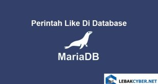 Perintah Like Di Database MariaDB