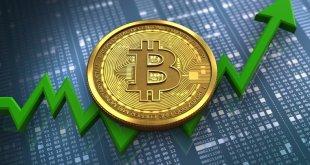 Bos Twitter Masih Yakin Dengan Nilai Bitcoin