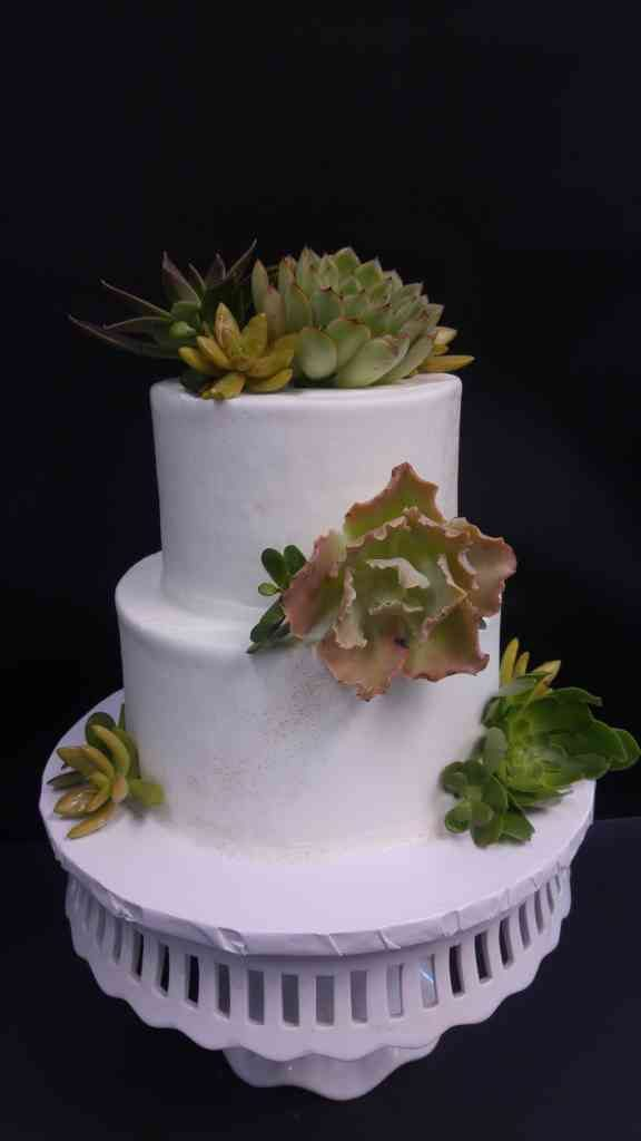 Succulent wedding cake   le  Bakery Sensual Posted in Wedding Cakes