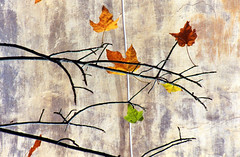 Leaves of Lebanon