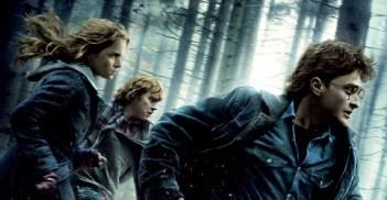 Harry-Potter-7bis