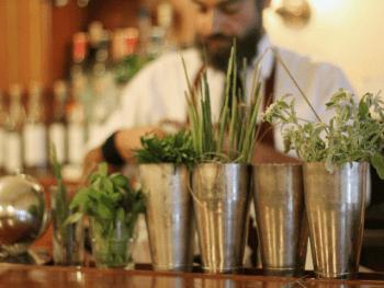 cocktails-aux-herbes-la-tendance-Le_Barman_Vous_Deteste