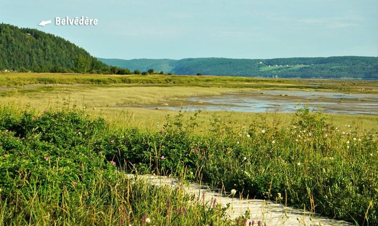 Panorama du Fjord du Saguenay et du belvédère depuis les battures de St-Fulgence
