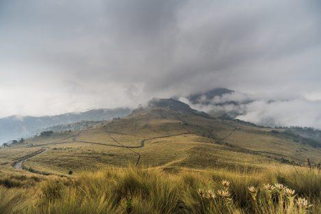 montagne au mexique