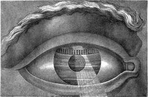 ledoux - eye - le bastart