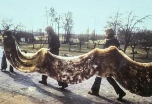 teresa murak - eastern carpet - le bastart