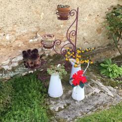 des couleurs au jardin