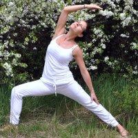 Yoga Gerasdorf:  Yogablüte