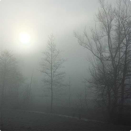 12 von 12 - März 2015 - Nebel am Morgen
