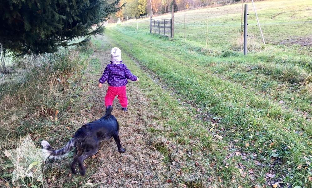 Wochenende in Bildern - Zurück in den Alltag - Lotte im Wald