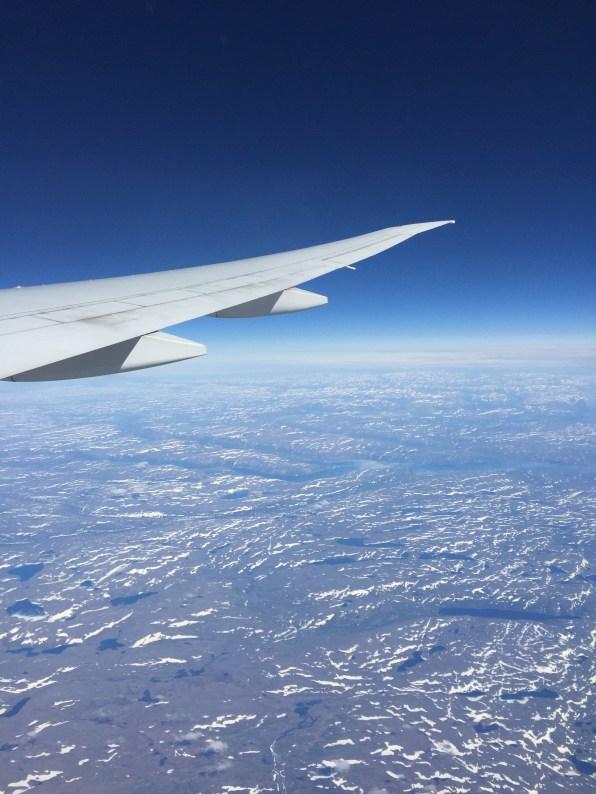 Flug, Foto: ©Denise Ott