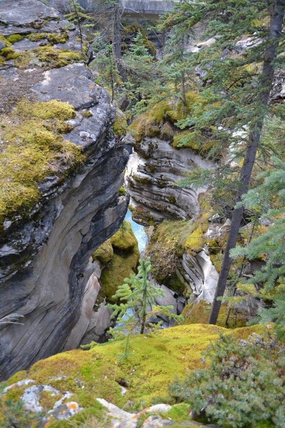Athabasca Falls Foto: ©Denise Ott