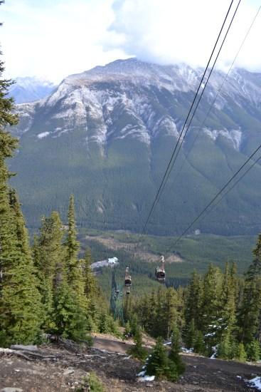 Sulphur Mountain, Foto: ©Denise Ott