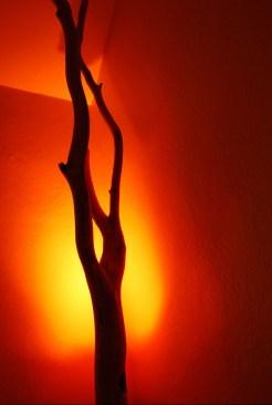 naturlampe-farbe