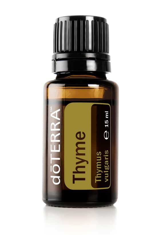 Thymian – Thymus vulgaris – Thyme